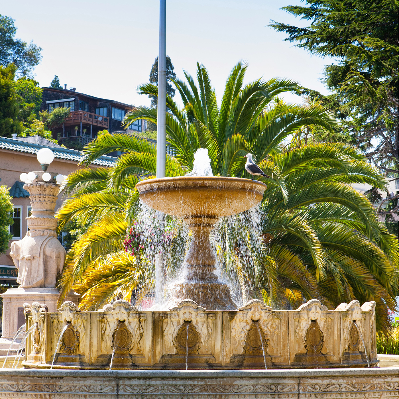 Sausalito Real Estate, Homes & Houses for Sale, Marin CA | PARAGON Real Estate Group
