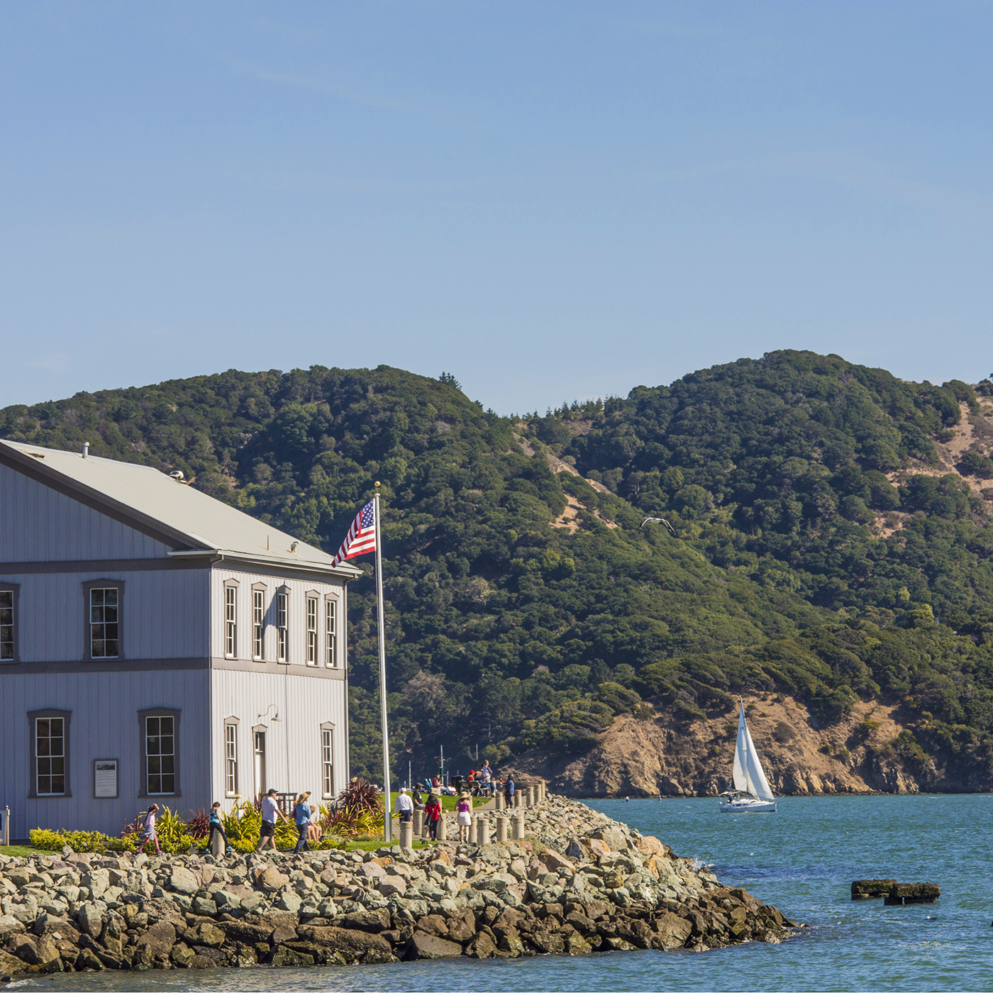 Tiburon Real Estate, Homes & Houses for Sale, Marin CA | PARAGON Real Estate Group