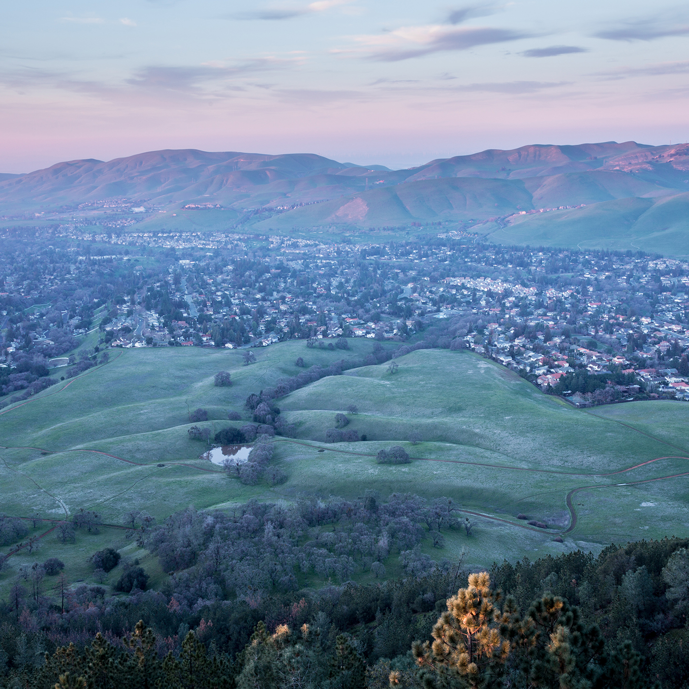 Pleasanton Real Estate, Homes & Houses for Sale, Contra Costa / Tri-Valley CA | PARAGON Real Estate Group