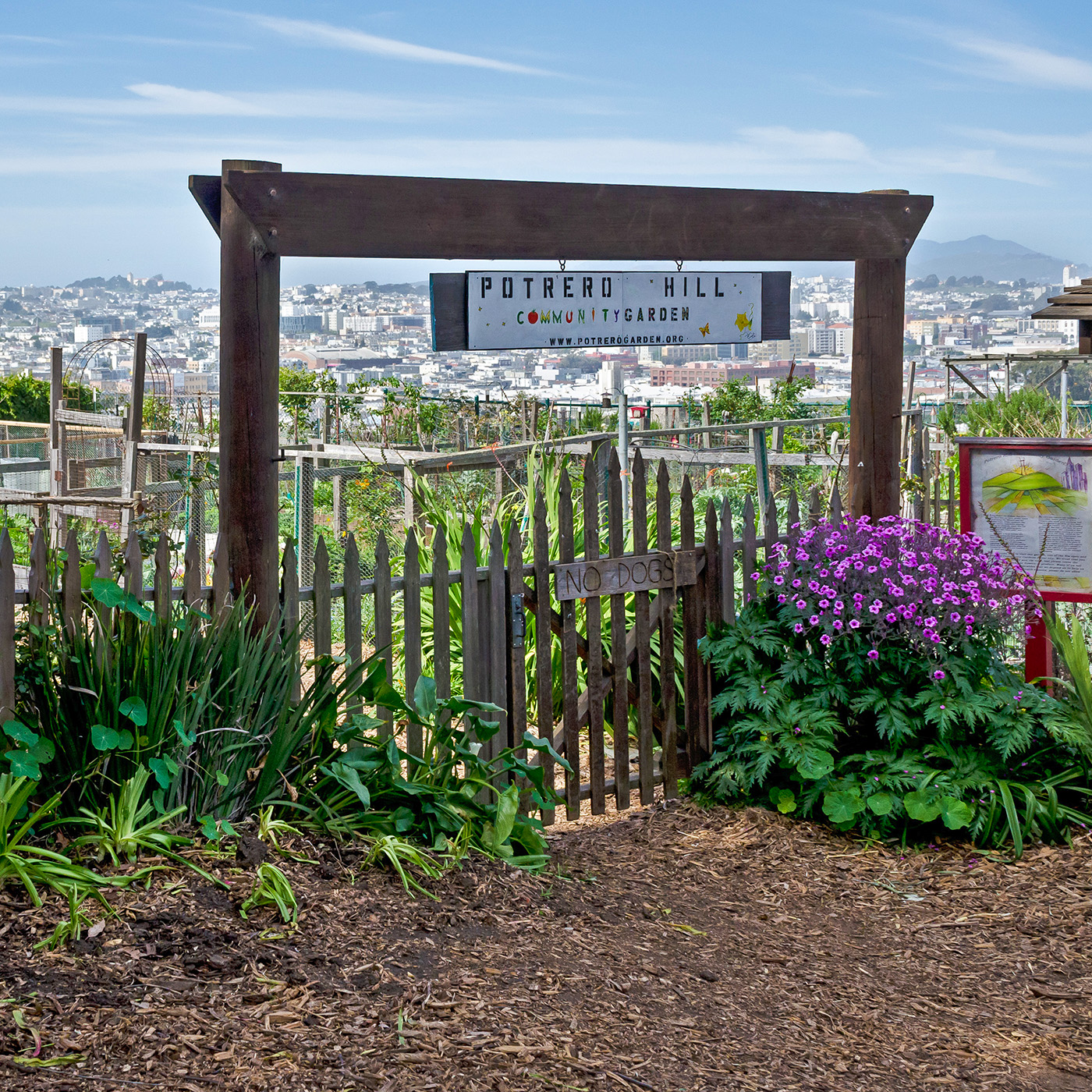 Potrero Hill Real Estate, Homes & Houses for Sale, San Francisco CA | PARAGON Real Estate Group