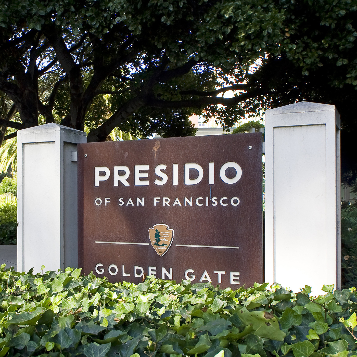 Presidio Heights Real Estate, Homes & Houses for Sale, San Francisco CA | PARAGON Real Estate Group